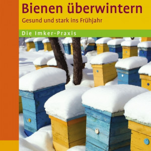 Bienen überwintern -0